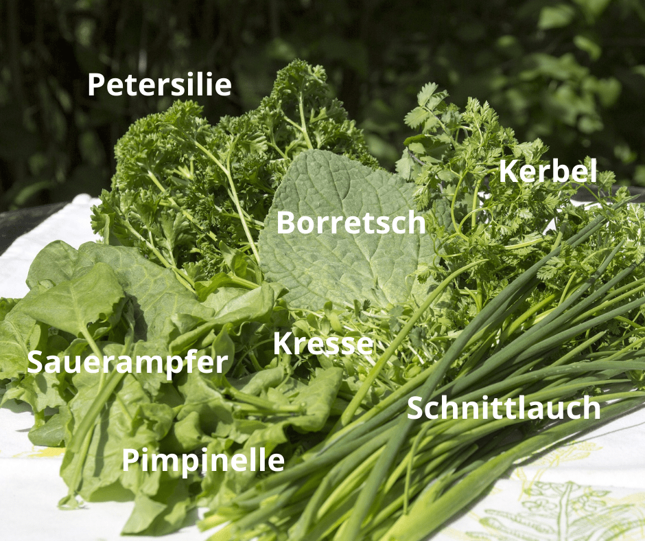 7 Kräuter grüne soße